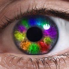 Именно от радужки и зависит цвет глаз
