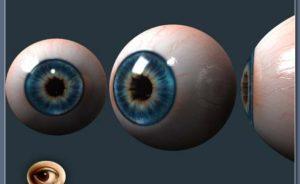 Анатомия глаза