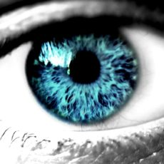 Переломление световых лучей происходит на роговице глаза