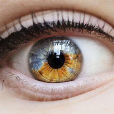 Склера глаза - его наружная часть