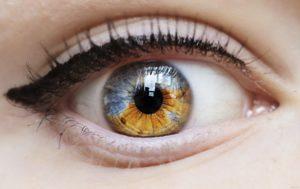 Склера глаза — что это такое, какие функции она выполняет и какие патологии может иметь