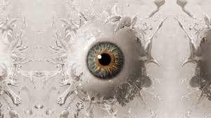 Содержимое глазного яблока