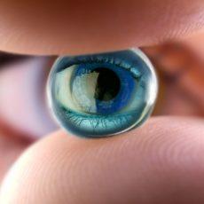 Глазной хрусталик разделяет на две части