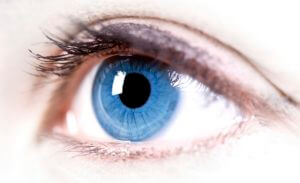 Цилиарное тело глаза: функции, анатомия, возможные патологии