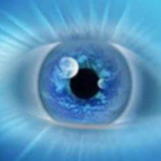 Глаза - очень важный орган, главная функция которых - зрени