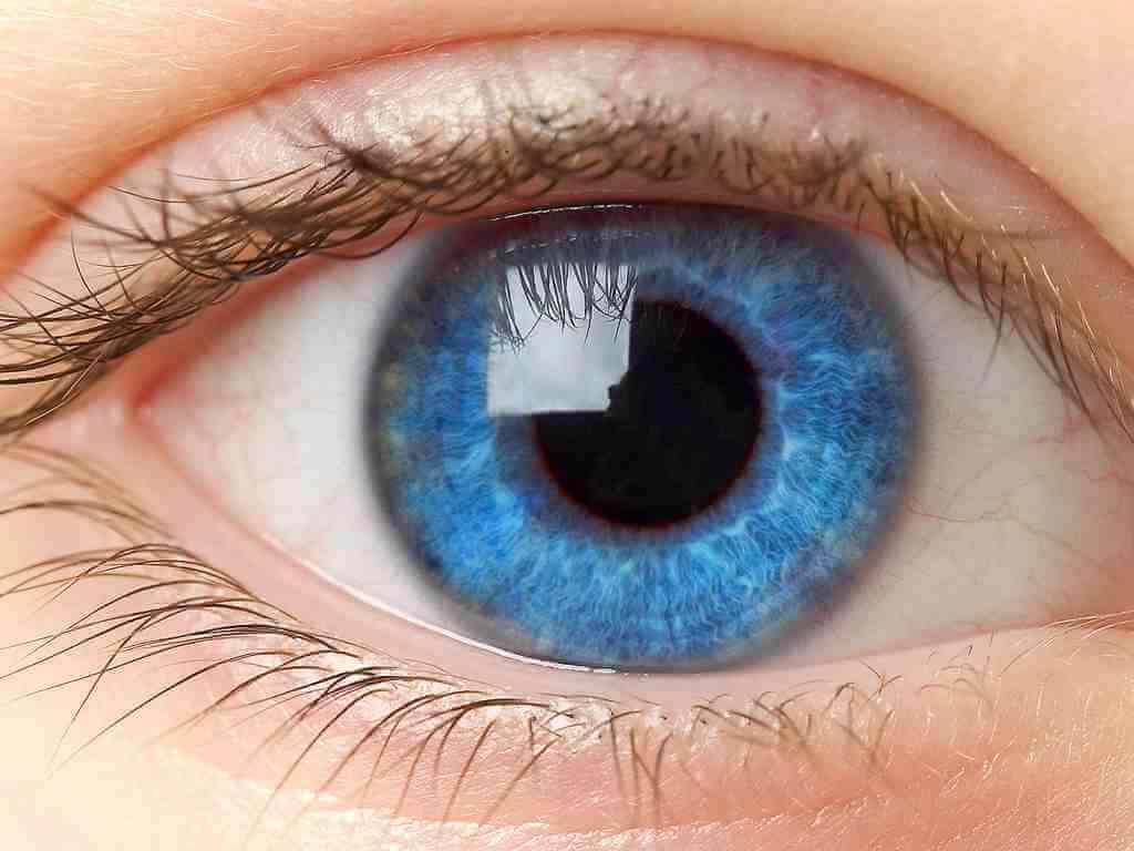 Диабетическая ретинопатия: что это такое, факторы риска, симптомы и лечение