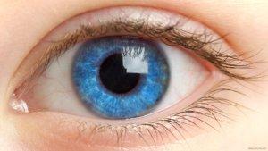 Глазные капли Актипол