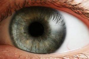 Помутнение хрусталика глаза: причины и последствия