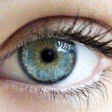 Глаукома - распространённое заболевание и каждый должен знать о нём