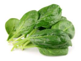 Что такое шпинат, полезные свойства и противопоказания