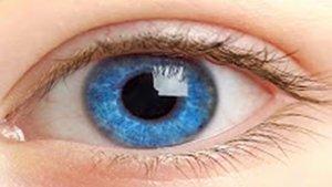 Гимнастика для глаз по Бейтсу