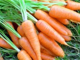 Заботимся о здоровье глаз, чем полезна сырая морковь