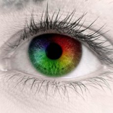 Не все дальтоники видят одинаково, в зависимости от вида патологии искажается восприятие тех или иных цветов