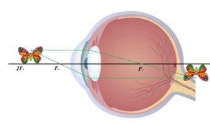 Капли для глаз при дальнозоркости