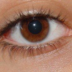 Основное направление использования Физостигмина салицилата в офтальмологии - лечение глаукомы