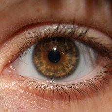 Лекарство выпускается в нескольких формах, однако при появлении аллергических глазных заболеваний применение глазных капель Кетотифена наиболее целесообразно