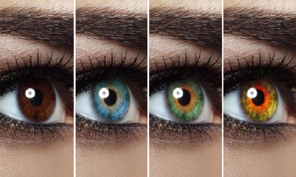 Цвета глаз