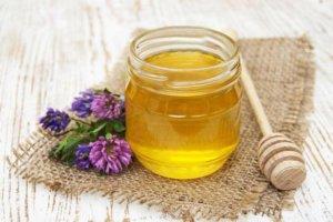 Выбор сорта мёда